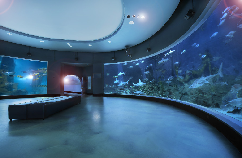 Sea Life Melbourne announced as Property Council Awards finalist